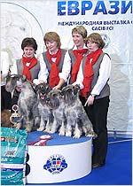 Евразия 2006
